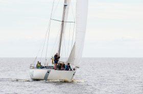Sailing Yacht Venta